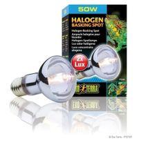 Exo Terra - Ampoule Halogène Basking Spot - 50W
