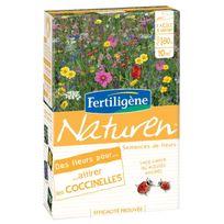 Fertiligene - Des fleurs pour attirer les coccinelles Fertiligène