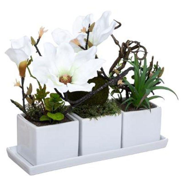 Composition Florale & Plateau \