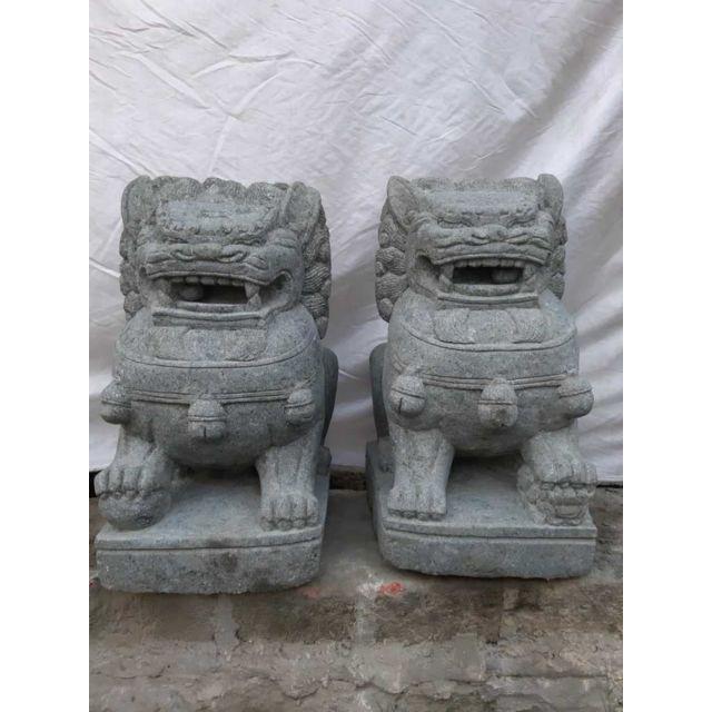 Wanda Collection Couple chien Fu Foo lion statue pierre volcanique 65 cm