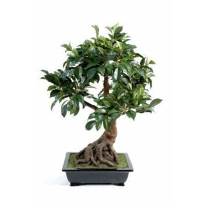 Artificielflower bonsa artificiel arbre miniature ficus for Arbre bonsai exterieur
