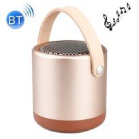 Wewoo - Enceinte Bluetooth d'intérieur or Haut-parleur portatif en métal V4.1 extérieur avec la Mic, appui mains-libres et ampère Ligne Aux In