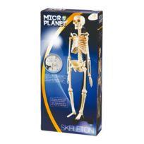 Logitoys - Coffret Science Squelette corp Humain