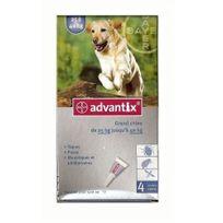 Advantix - Pipettes anti-puces grand chien >25kg