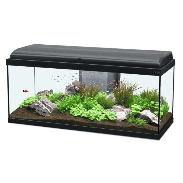 Aquarium - Achat Aquarium pas cher - Rue du Commerce