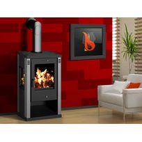 poele a bois feu continu double combustion achat poele a bois feu continu double combustion. Black Bedroom Furniture Sets. Home Design Ideas