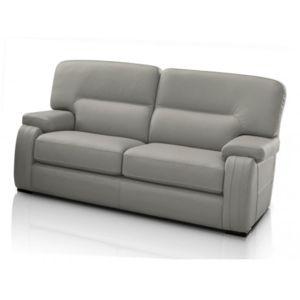 marque generique canap 2 places rodez 100 cuir de buffle gris clair 162cm x 90cm x 92cm. Black Bedroom Furniture Sets. Home Design Ideas