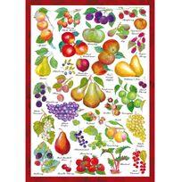 Schmidt - Puzzle de 1000 pièces : The countryside collection : Fruits