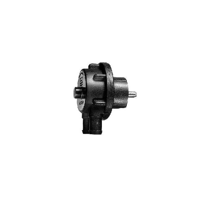 Bosch Pompe à eau 2000 l/h, 1/2\