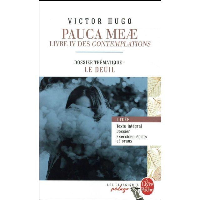 Pauca Meae Livre Iv Des Contemplations Dossier Thematique Le Deuil