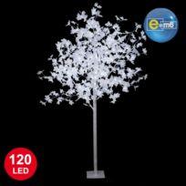 IDEKO - Erable lumineux blanc