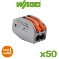 Wago - Bornes de connexion automatique S222 2 entrées par 50