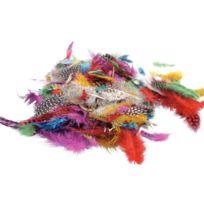 - plumes faisan assorties - sachet de 10 grammes