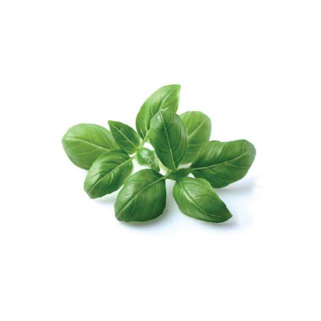 Click & Grow Recharge triple de Basilic pour Smart Garden - Click and Grow