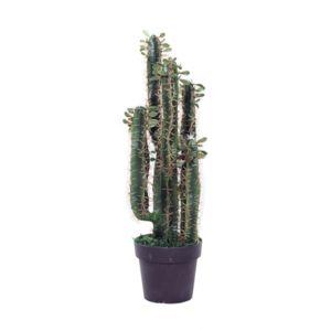 no name plante artificielle grand cactus 80cm environ pas cher achat vente plantes et. Black Bedroom Furniture Sets. Home Design Ideas
