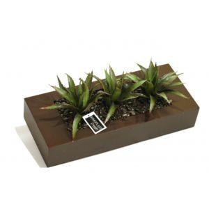 Tableau vegetal pas cher trendy tableau vgtal bois coul for Flowall pas cher