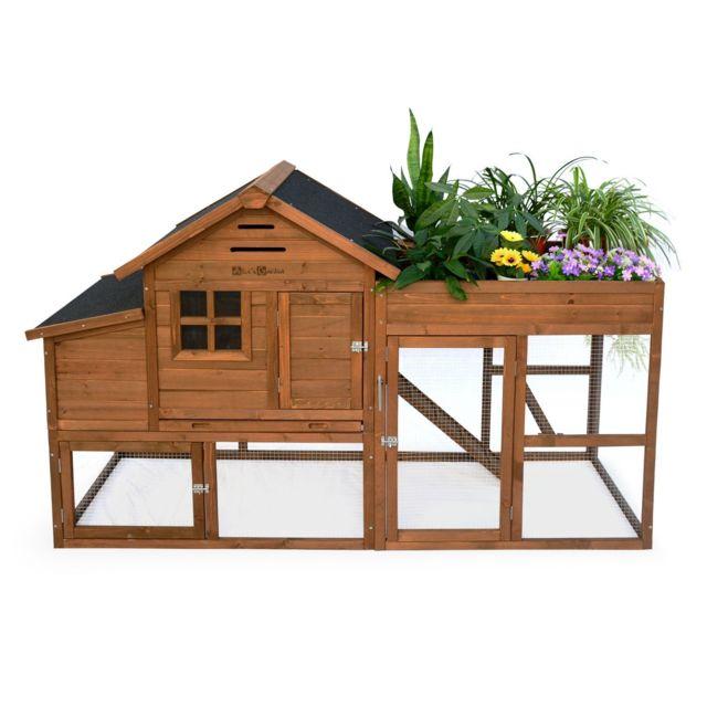 ALICE'S GARDEN Poulailler en bois avec carré potager CAMPINE, 4 poules