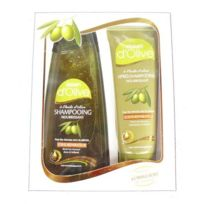 Dalan - Coffret capillaire Shampooing, Après-shampooing