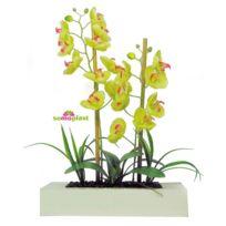 Somoplast - Composition d'orchidées artificielles - Cadre imposant en bois et galets - Création haut de gamme