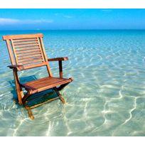 Wood-en-Stock - fauteuil en teck huilé modèle pliant, fauteuil de jardin