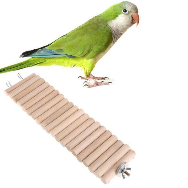 Wewoo Jouet pour 3 Pcs perroquet hamster couleur rond bois petite échelle route de planche jouettaille 30cm primaire