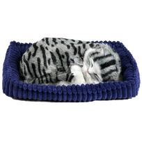 Perfect Petzzz - Chat tigré gris