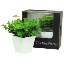 Somoplast - Coffret de 2 plantes vertes artificielles - Décoration méditerranéenne intérieure