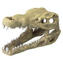 Aquadella - Aqua Della Décor Tete de crocodile M - 19.5x9.5x10.5cm - Pour aquarium
