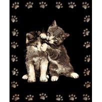 Le P'TIT Createur - Tableau Scraper à gratter Doré 2 chats joueurs - Le p'tit créateur