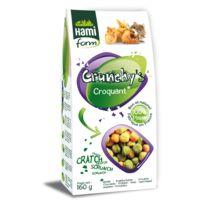 Hamiform - Crunchy's Croquant pour Rongeur - 160g