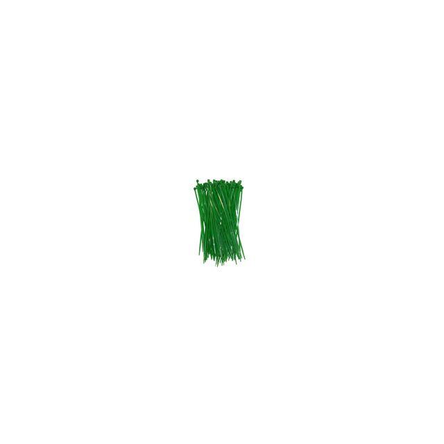 BOUTIQUE-JARDIN Attache canisse vert