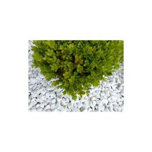 classgarden galet blanc pure calibre 12 24 mm pas cher. Black Bedroom Furniture Sets. Home Design Ideas