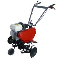 LAWNMASTER - Motobineuse thermique GP 160 - M180H