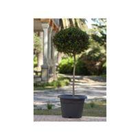 Plastiken - Pot a fleurs Ø 52 cm rond - Anthracite