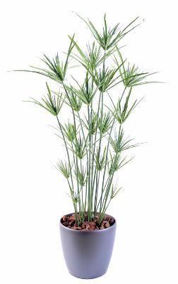 Artificielflower Plante artificielle Papyrus ornemental plastique en pot - intérieur extérieur - H. 110cm vert - taille : 110 cm