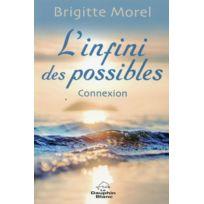 Dauphin Blanc - l'infini des possibles ; connexion