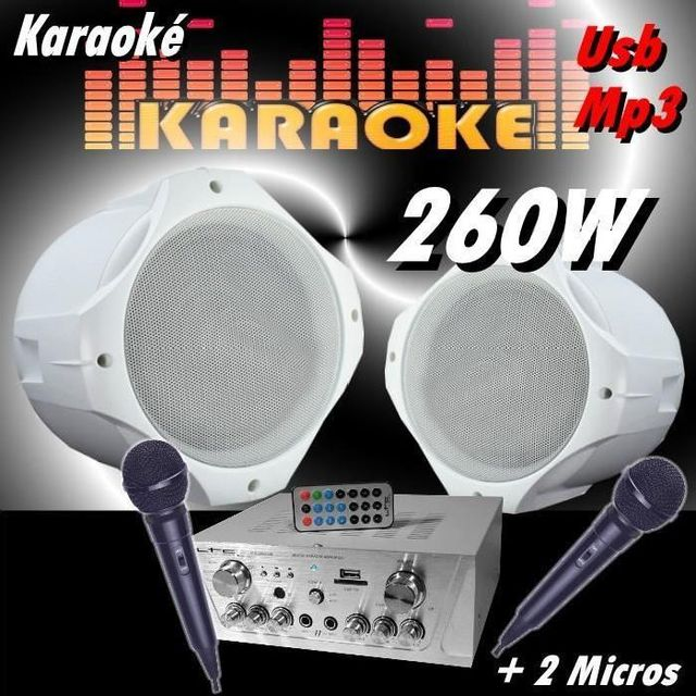 Ibiza Sound Karaoke 260w 2 micros 1 ampli usb dj 2 enceintes