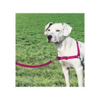 Easy Walk - Harnais M - Framboise - Pour chien
