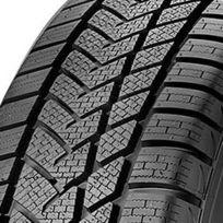 Sunny - pneus Wintermax Nw211 205/50 R17 93V Xl