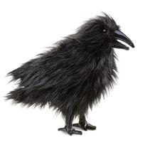 Folkmanis - Puppets - 2430 - Marionnette Et ThÉÂTRE - Raven
