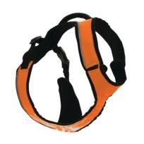 Zolux - Harnais Rando / Jogging Canisport Orange Xl