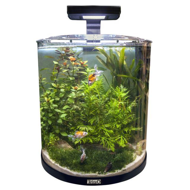 Acheter Un Aquarium aquarium - achat aquarium pas cher - rue du commerce