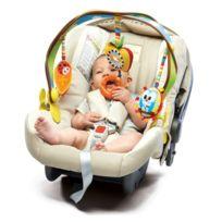 Babysun Nursery - Arche d'éveil Woodland Pack & Go