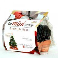 - Mini serre 6 pots sapins de Noël