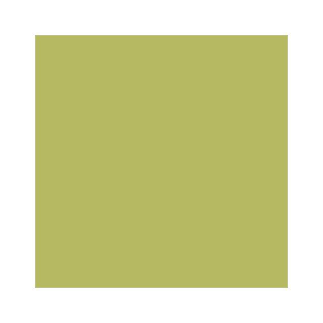 Adzif Biz Rouleau adhésif - Papier peint autocollant Aspect Satiné Vert Thé 30 m x 61,5 cm