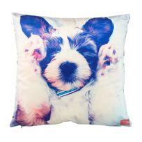 Home Stories - Coussin velours polyester photoprint chien patte filtre rétro 45x45cm Cali