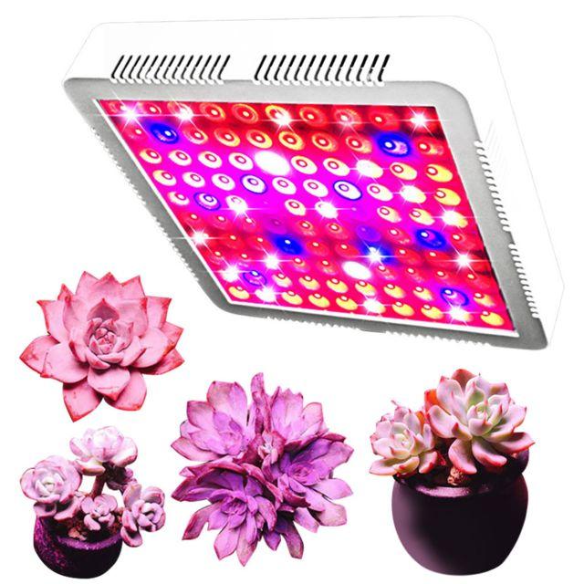 Generic 300W Light Led Full pour la culture de plantes d'intérieur Microgreens hydroponiques dans des tentes