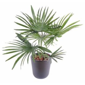 Artificielflower palmier artificiel baby en piquet for Fausse plante exterieur pas cher