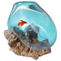 Les animaux de la fee aquarium nano silhouette led 12 for Achat poisson combattant