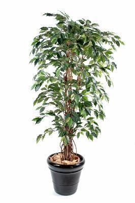 artificielflower arbre artificiel ficus lianes grandes feuilles plante d 39 int rieur. Black Bedroom Furniture Sets. Home Design Ideas